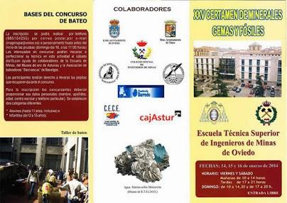 Programa en Oviedo