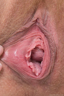 Creampie Porn - rs-imf_Ayda_BlueDressFishnetStockings_120-723075.jpg