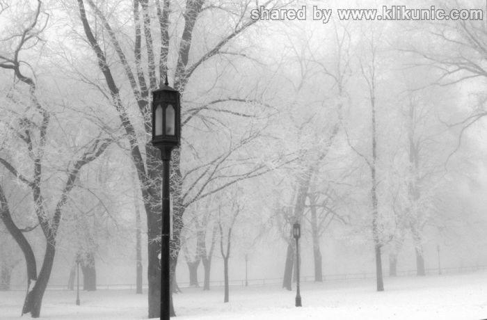 http://2.bp.blogspot.com/-Dlml60S3X1A/TXNbr7Cp55I/AAAAAAAAP-c/TucYz19Rqm4/s1600/winter_18.jpg