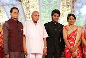 Aadi Wedding Reception Gallery-thumbnail-13