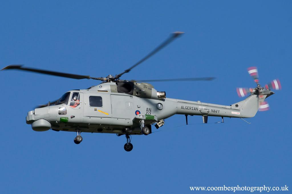 Fuerzas Armadas de Argelia Super+Lynx+argelino