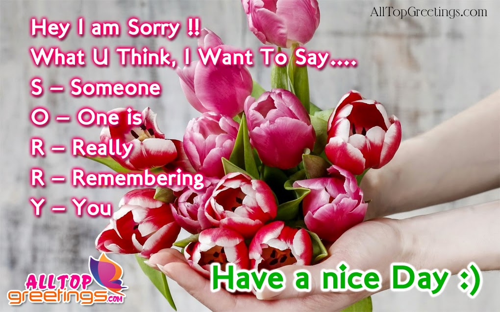 am Sorry Greeting Cards in English   All Top Greetings   Christmas ...