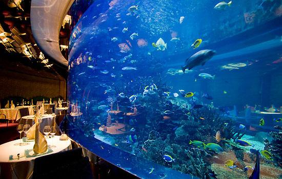 Burj Al Arab Dubai Nice View And Photos 2011 Travel And