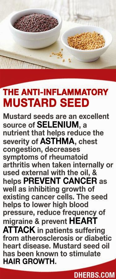 Nomnom superfood mustard seeds - What to do with mustard five unknown uses ...