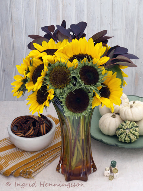 Sunflowers, Pumpkins