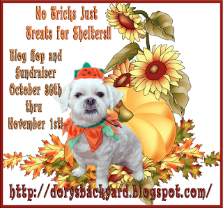 No Tricks Just Treats For Shelters