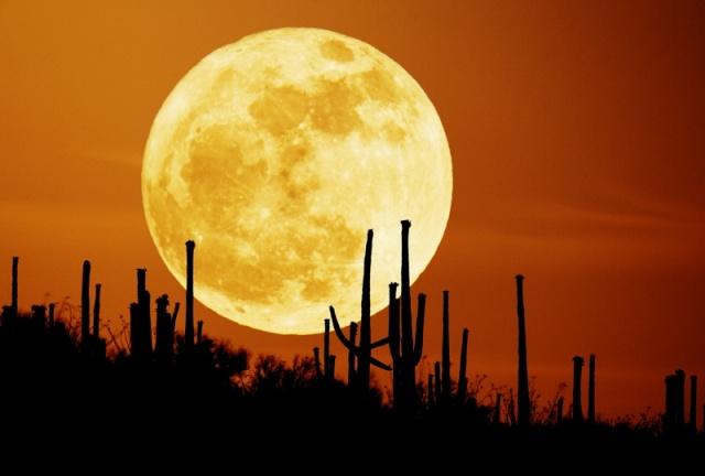 القمر ... كما لم ترآه من قبل .. رااائع  Stunning-photos-of-moon-12