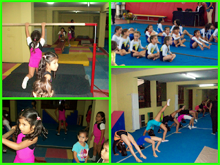 Escuela de gimnasia art stica oligym definici n gimnasia for Definicion de gimnasia