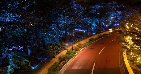 Tokyo Illumination di Roppongi