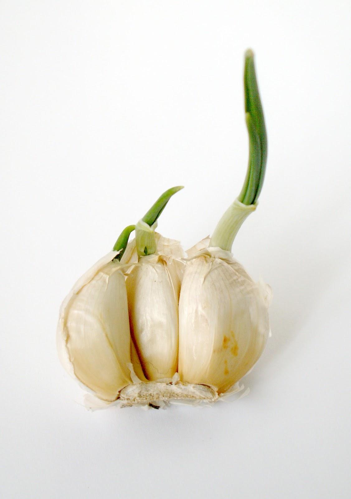 Wallpaper: Amazing Health Benefit of Garlic