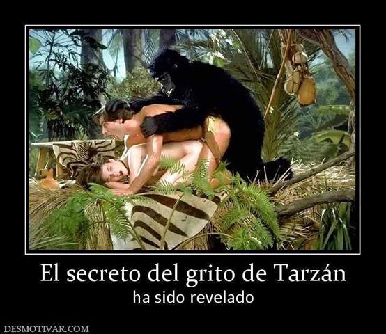 CHISTES DE TARZAN - CHISTES DE TARZAN Y JANE