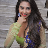 Daksha Nagarkar Hot Photo Gallery in Half Saree at Ak Rao Pk Rao Audio Launch CelebsNext (51)