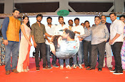 Bhale Bhale Magadivoy audio launch-thumbnail-15