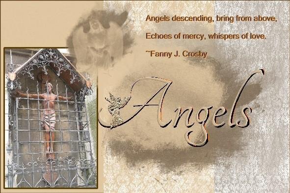 Jan.2016 - Angels