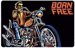 Born Free 8