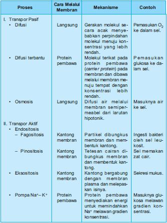 Mekanisme Transpor Pasif dan Transpor Aktif