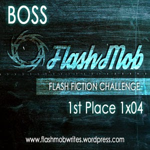 1st Place Winner - FlashMob