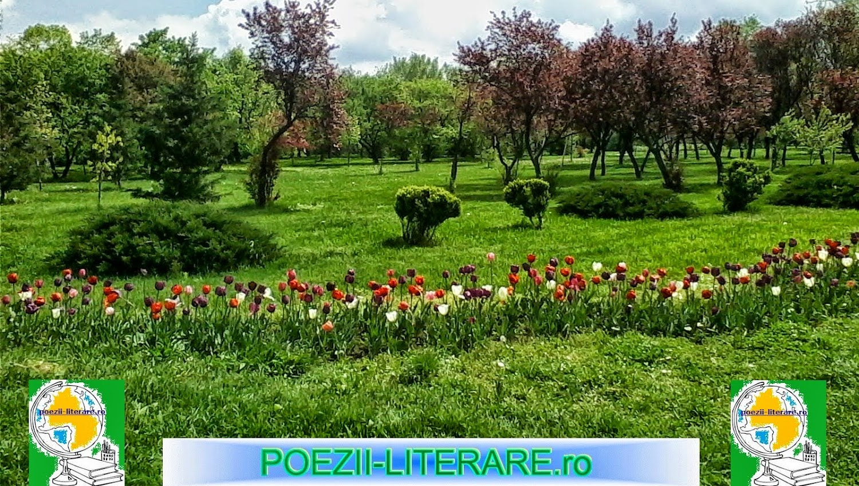 poezii-literare.ro