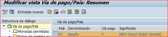 Vía de pago U SEPA adeudo directo SAP