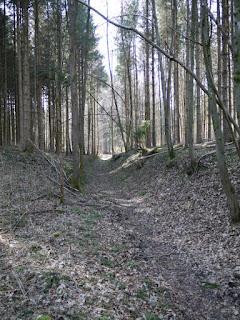 Aus dem Gleißental hochführende ehemalige Römerstraße