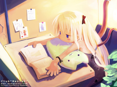 Nayu's Reading Corner: February - 61.4KB