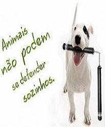 Pelo direito dos Animais !!