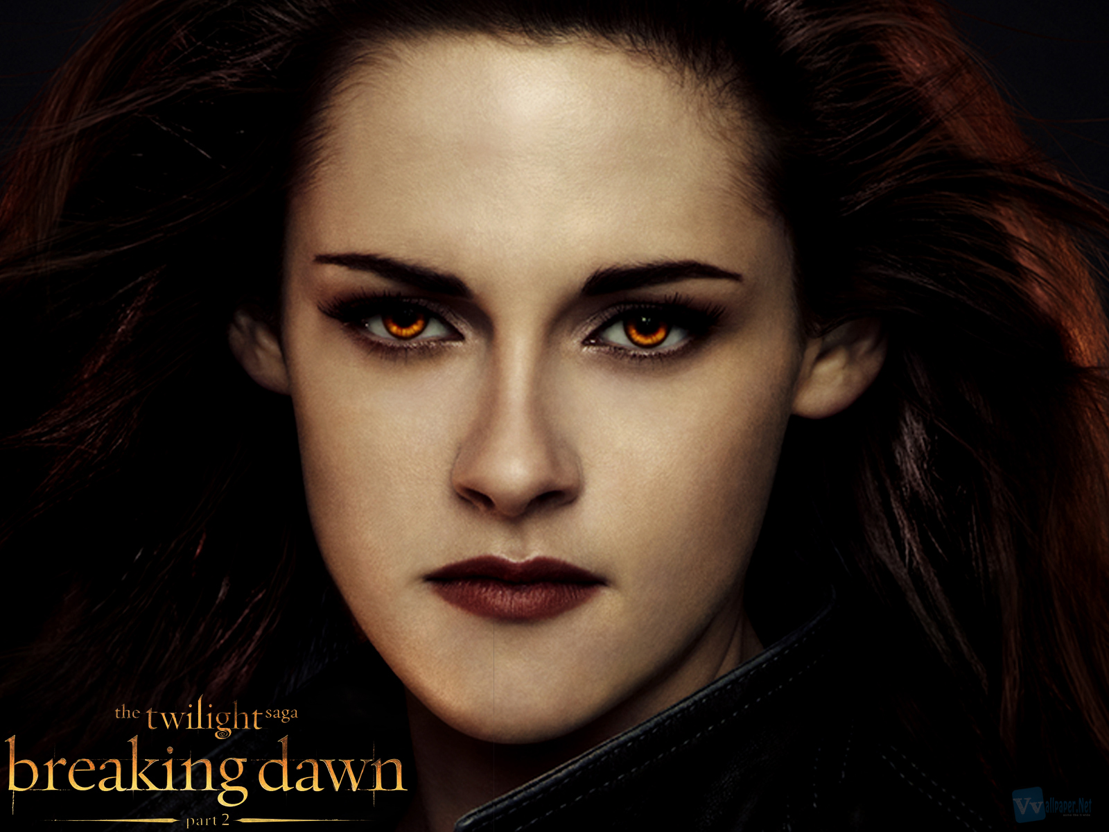 http://2.bp.blogspot.com/-DrWqw1vbJ9U/UFB-K4DAx7I/AAAAAAAAEho/OUD4M5sTPTE/s1600/Twilight-Saga-Breaking-Dawn-Part-2-Bella-HD-Wallpaper--Vvallpaper.Net.jpg