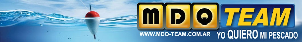 MDQTeam