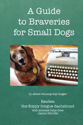 A Guide to Braveries for Small Dogs, by Reuben and Jamie Stroble