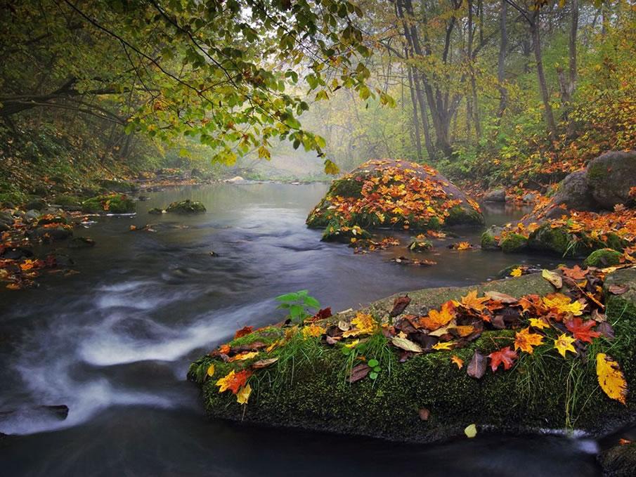 en g%C3%BCzel masa%C3%BCst%C3%BC resimler+%2831%29 2012 Yılının En Güzel Masaüstü Resimleri   Jenerik Fotoğraflar