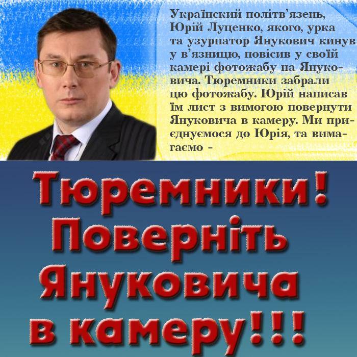 Мне жалко Луценко. Если суд не освободит - буду рассматривать вопрос о помиловании, - Янукович - Цензор.НЕТ 7272