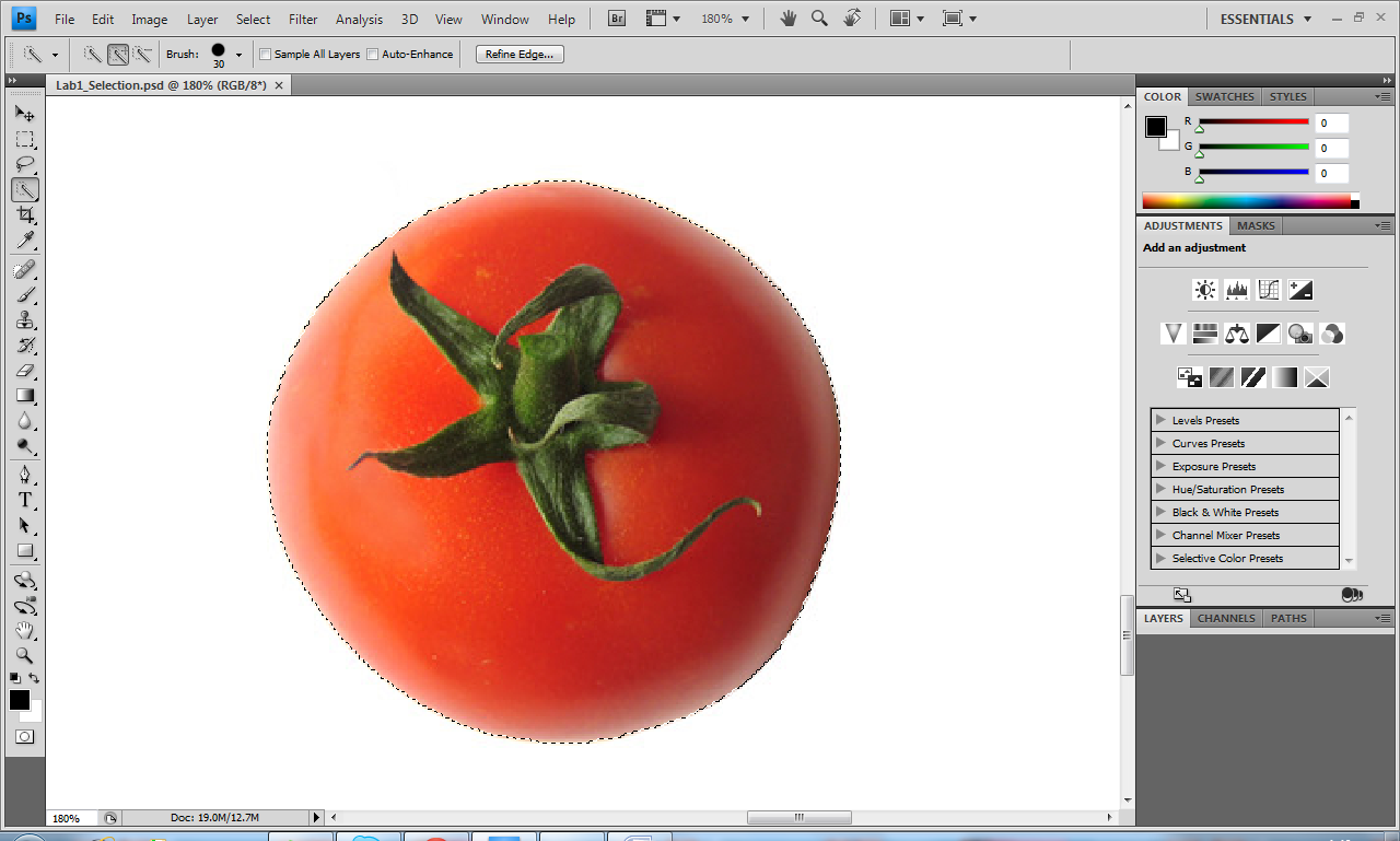 Digital media tutorial on photoshop selection tools then click on the quick selection tool which is the 4th icon on your left hand side tools menu then click on the tomato until the whole tomato image is baditri Images