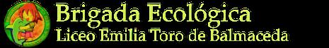 Brigada Ecológica
