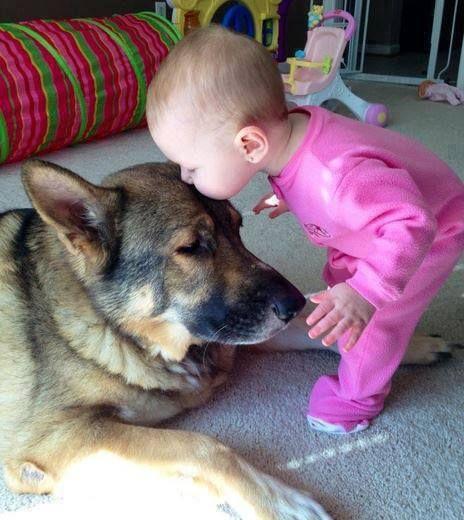 Quando-me sinto triste.... animais fofinhos e ternurentos