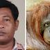 Indonésia: Cientistas descobrem homem com 100% do DNA de um orangotango