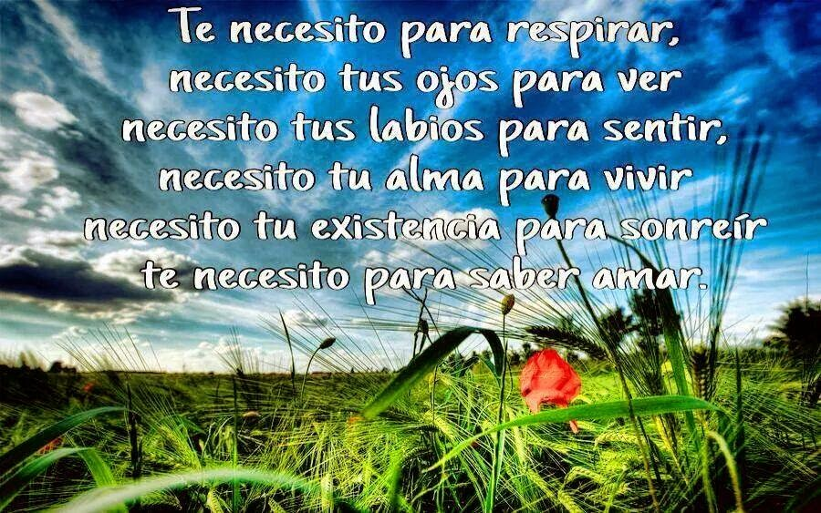 Frases de amor, necesito, respirar, ojos, ver, labios, sentir, alma, vivir, existencia, sonreír, amar.