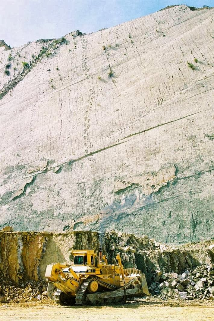 300-foot (91.44 m) wall in Bolivia, which revealed more than 5,000 tracks, more than 294 belong to different dinosaurs.