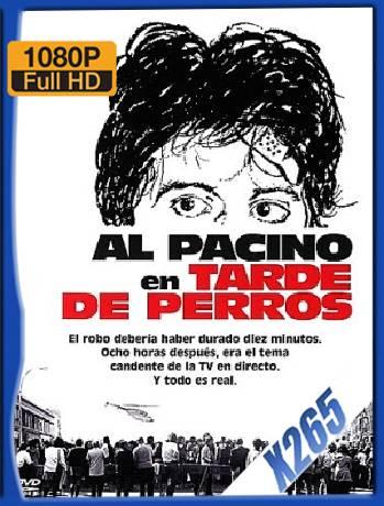 Tarde De Perros (1975) x265 [1080p] [Latino] [GoogleDrive] [RangerRojo]