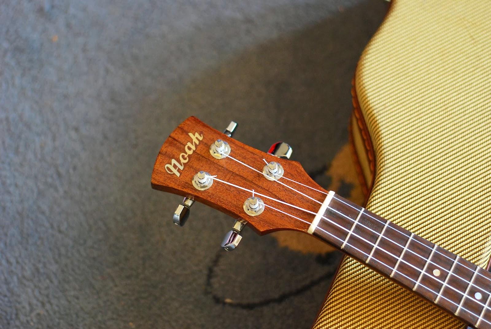 Noah mahogany concert ukulele headstock