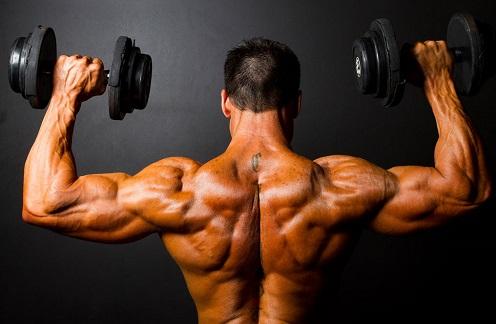 bodybuilding wallpaper, bodybuilding hd images, bodybuilder images, bodybuilding picture, bodybuilding tips with images, best bodybuilding photos, bodybuilding hd photos