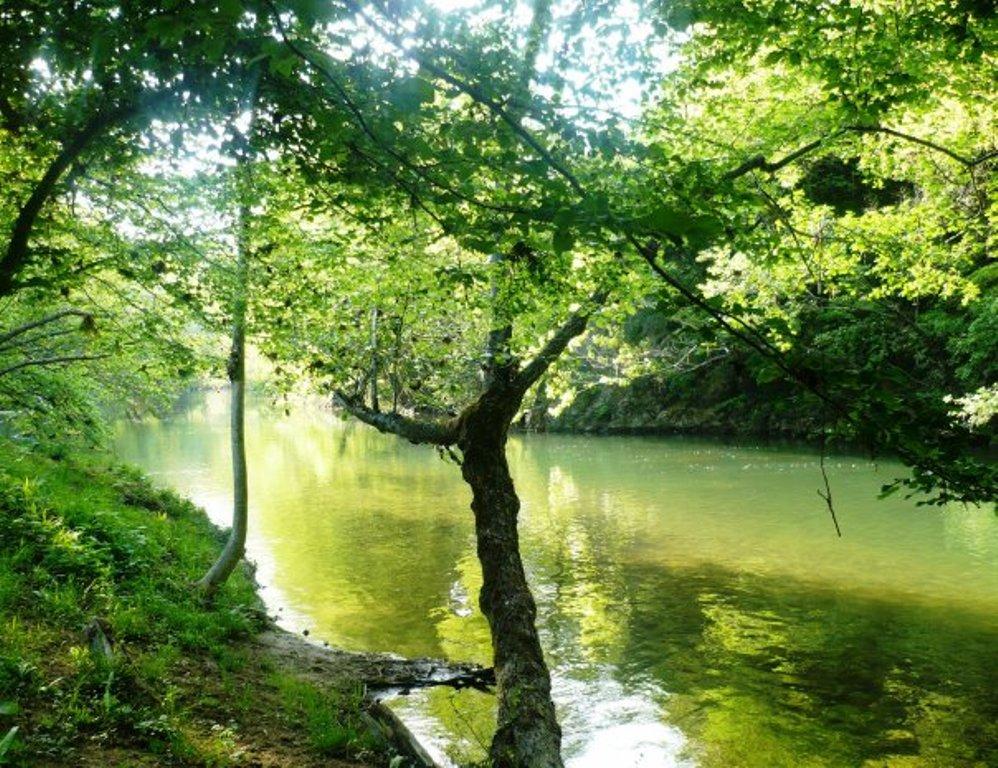 Traversata della valle del Timavo: valle dei mulini, visita alle grotte o itinerario grotte slovene