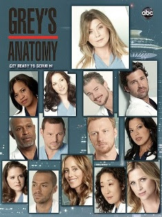 Grey's Anatomy – Todas as Temporadas – Dublado / Legendado