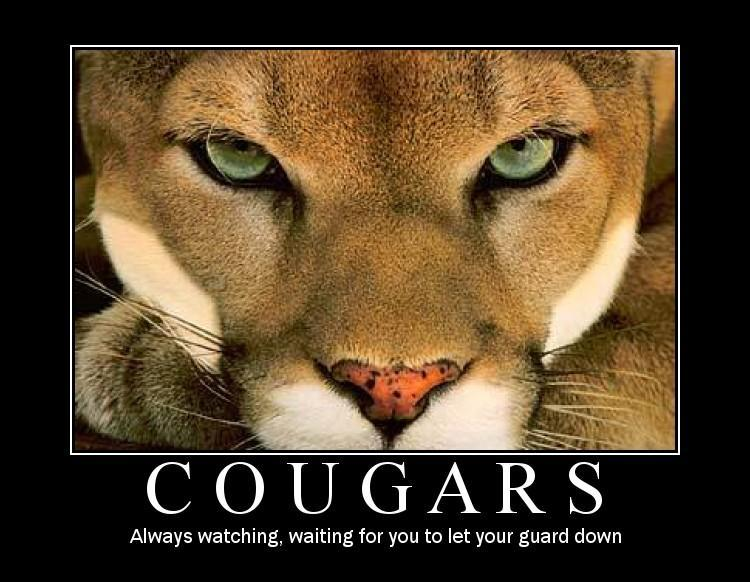 You how old to be a cougar opinion