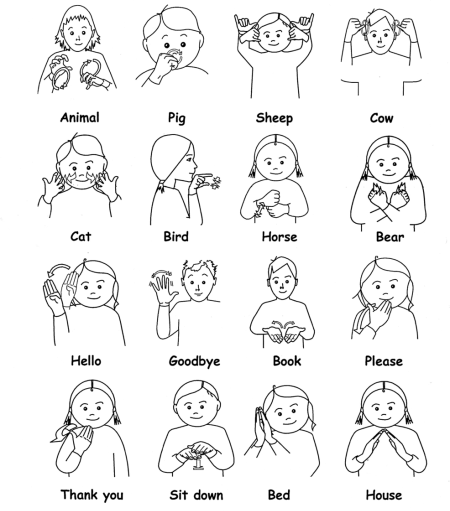 Sign Language college basic academic subjects examination