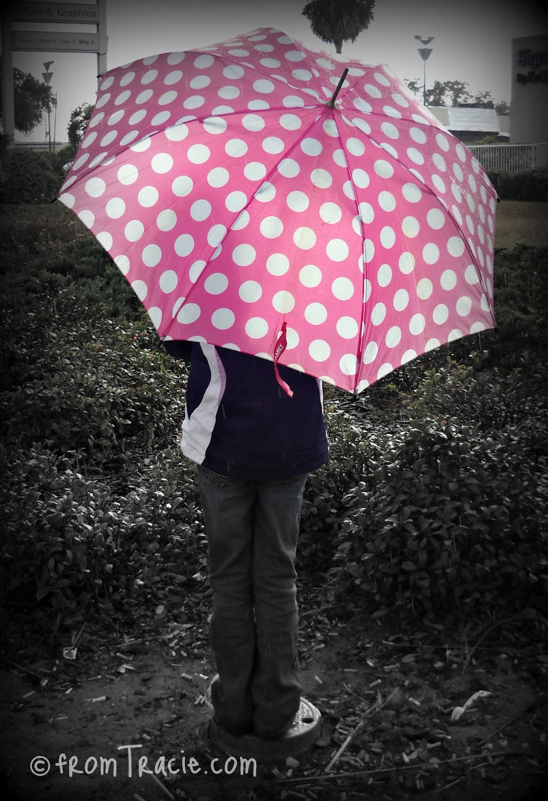 Girl With Pink Polka Dot Umbrella