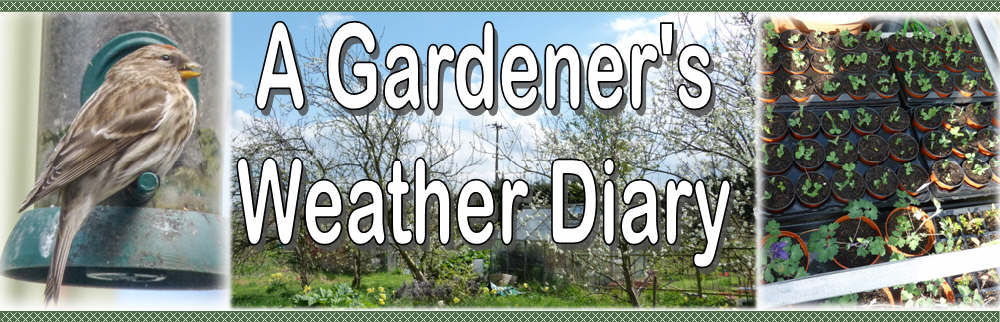 A Gardener&#39;s Weather Diary