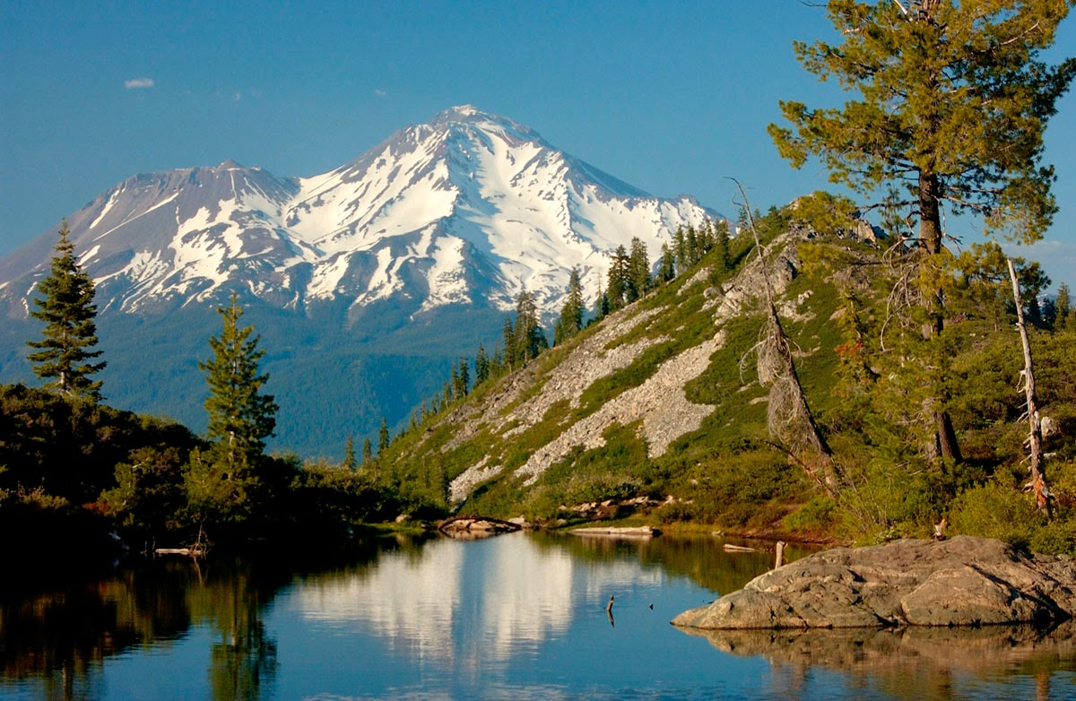 National forests and national parks in the sierra nevada for Shasta motors redding california