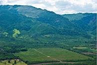 Muere agricultor disparado con retrocarga en caserío de Mojarras