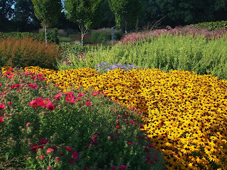 Sussex Prairies Garden. Amazing flowers and good example of garden design. The colour in this garden creates a stunning landscape.