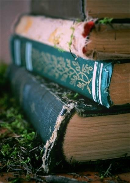 Alma en los libros